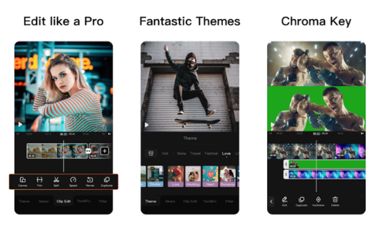 Download Viva Video App for Windows 10