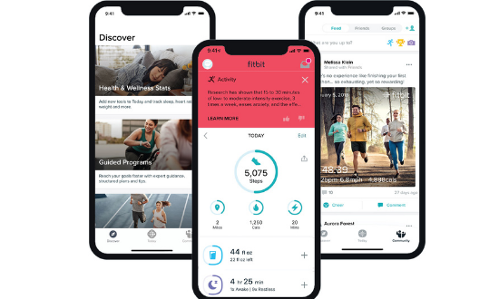 Download fitbit app for pc